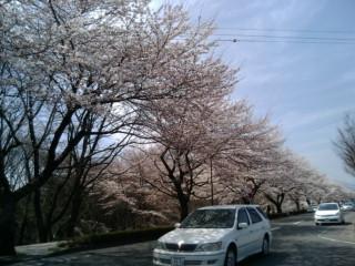 冬は必ず春となる