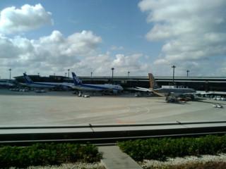 飛行機を見てテンションMAX